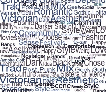 Selection of words used by survey respondents to describe & discuss Goth